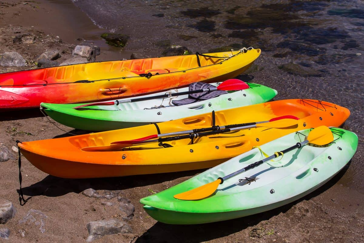 4 sit-on-top kayaks on the shore