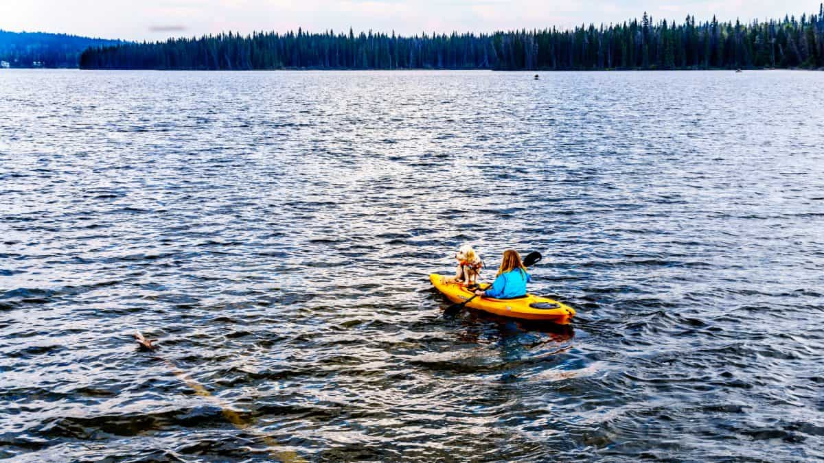 women on yellow kayak out at sea with a dog