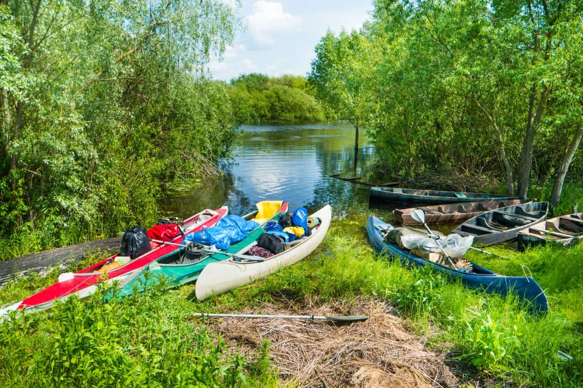 Many loaded kayaks with cargo on river