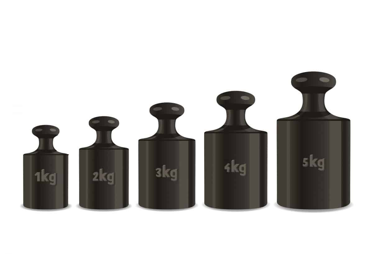 Kayak weight - calibration weights on a white background.