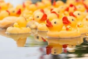 Best Ducky Kayak: 2020's Top 8 Inflatable Adventure-Ready Duckies