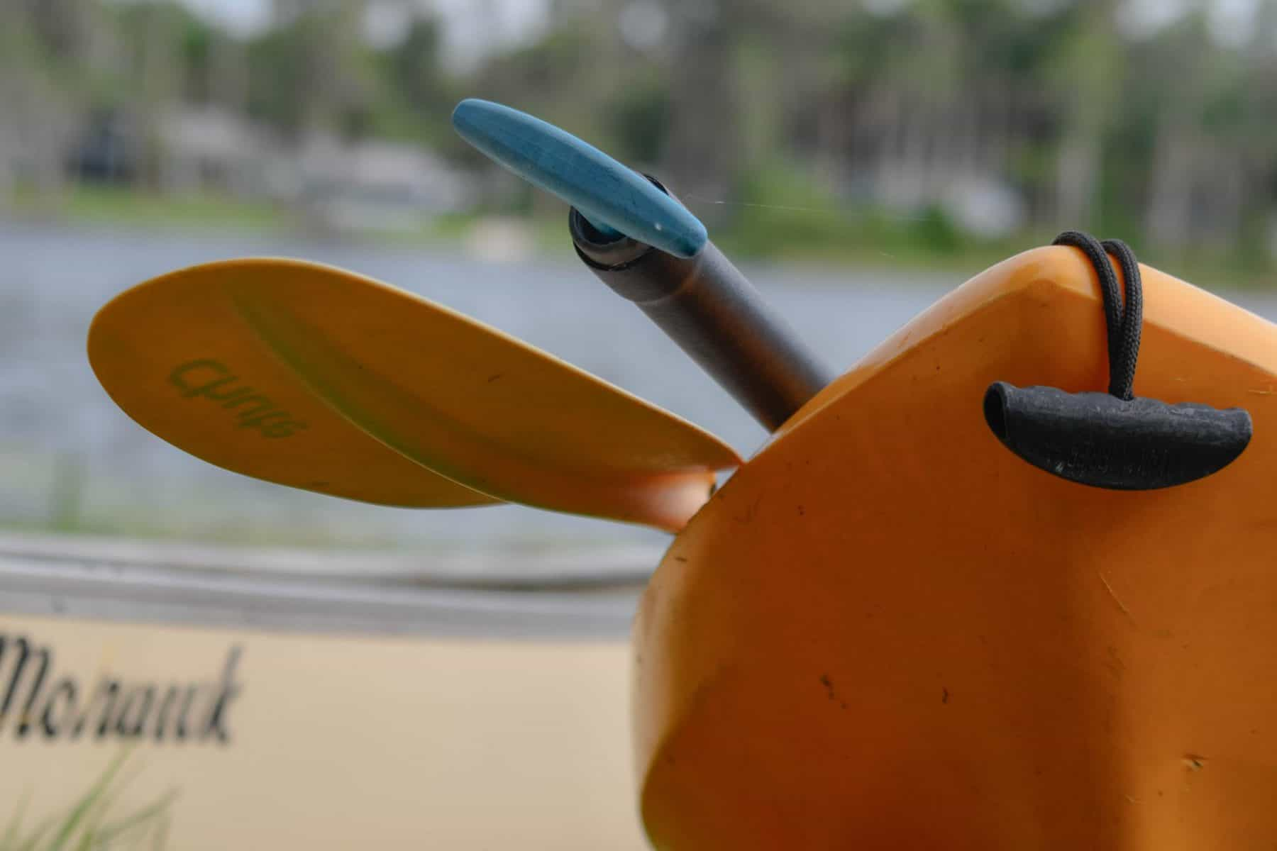 paddling vs rowing