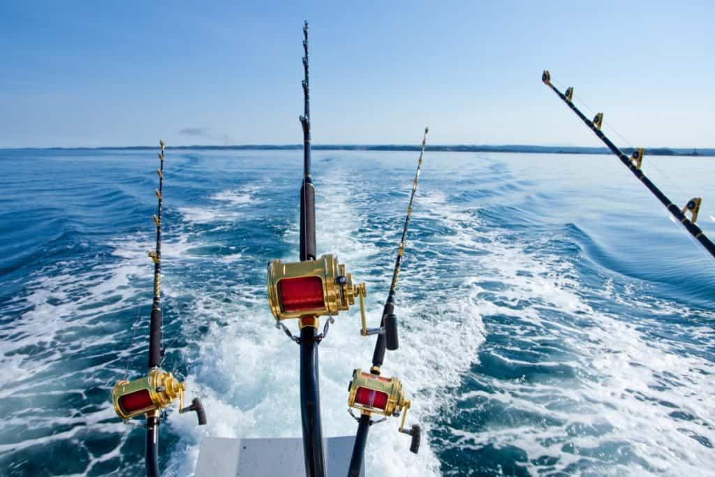 Fishing Near me; View of 4 Fishing rods off the back of the boat