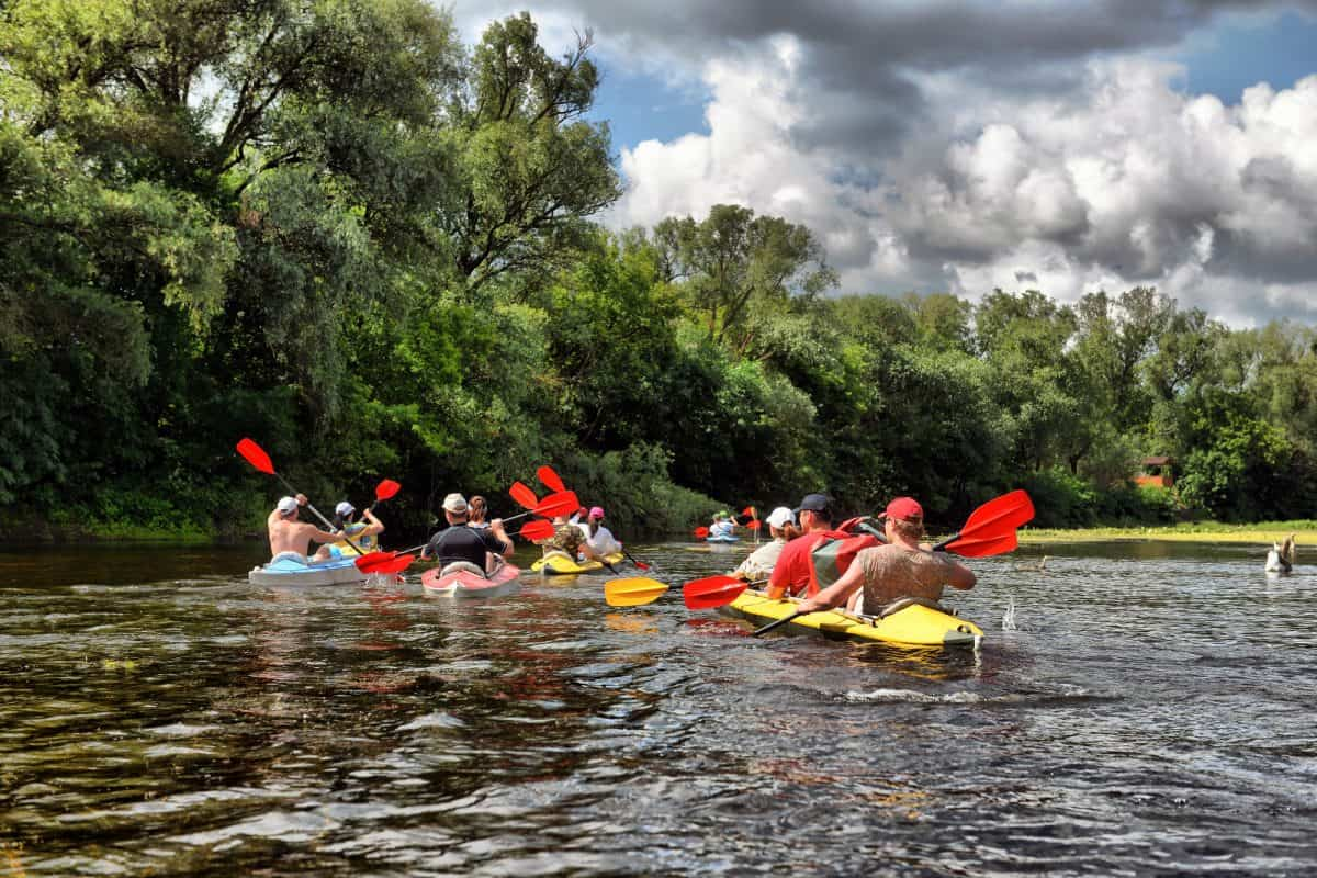 group of kayakers on a trip down the river