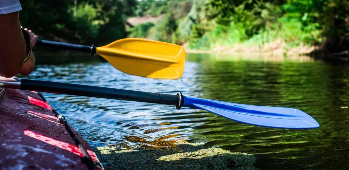 Close up of kayak paddles