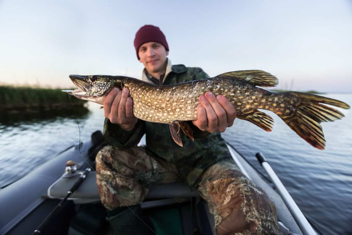 Young fisherman holding pike